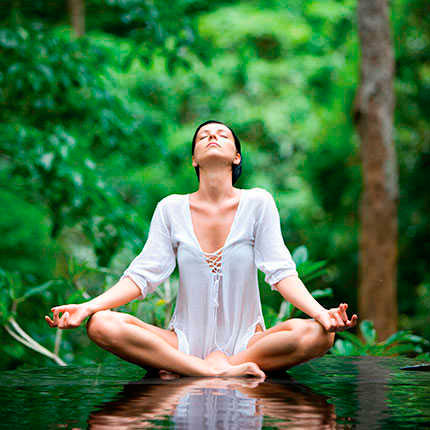 """Kelly DiNardo article """"9 Spas Where You Can Try Forest Bathing,"""" Fodor's Travel"""