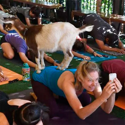 """Kelly DiNardo writer author of """"Yoga is about inner peace"""" in USA Today"""